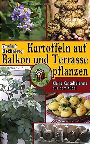 Kartoffeln auf Balkon und Terrasse pflanzen