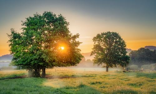 Mikroabenteuer Sonnenaufgang